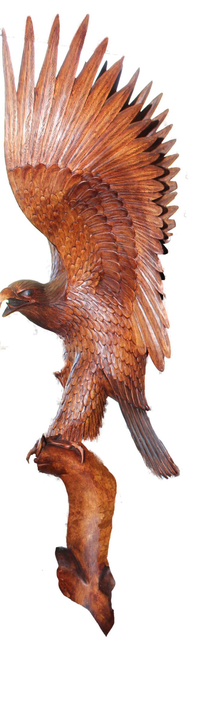 wood carvings of eagle heads | Eagle Wood Carving by mysticmorning