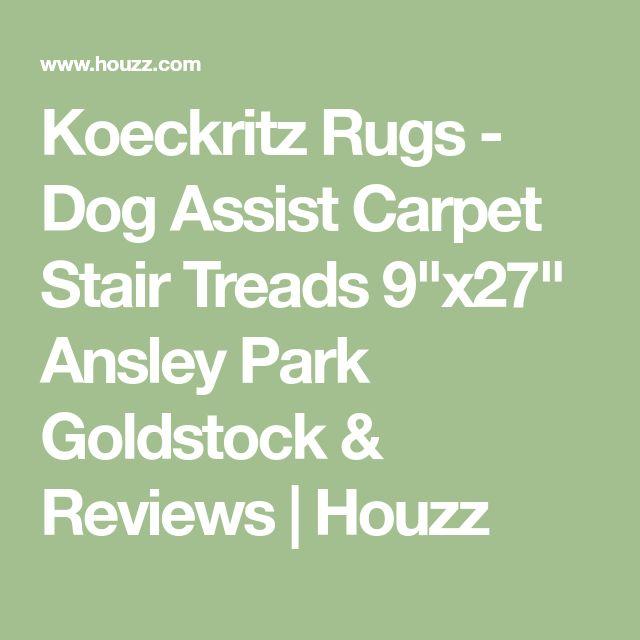 "Koeckritz Rugs - Dog Assist Carpet Stair Treads 9""x27"" Ansley Park Goldstock & Reviews   Houzz"