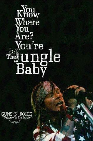 WATCH IT BRING YOU TO YOUR SHANANANANANANANANA KNEES! KNEES! IN THE JUNGLE, WELCOME TO THE JUNGLE!!