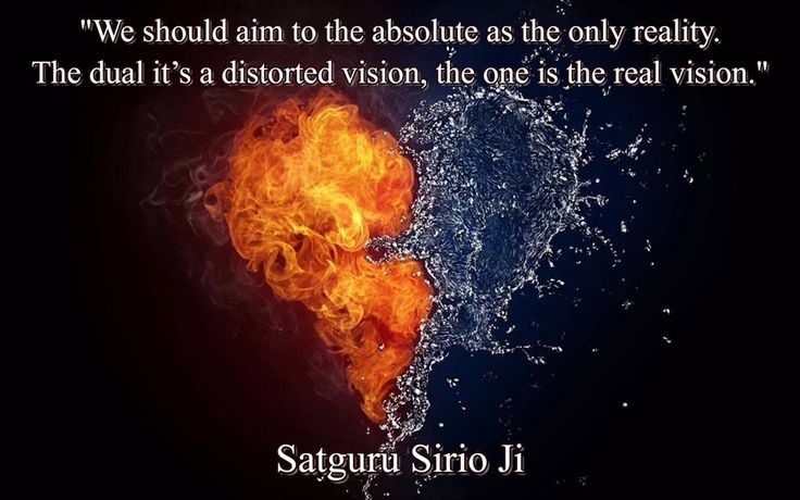 """We should aim to the absolute as the only reality. The dual it's a distorted vision, the one is the real vision."" 