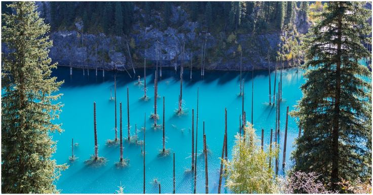 """A wonder of nature """"helped"""" by an earthquake: The Sunken Forest of Lake Kaindy"""