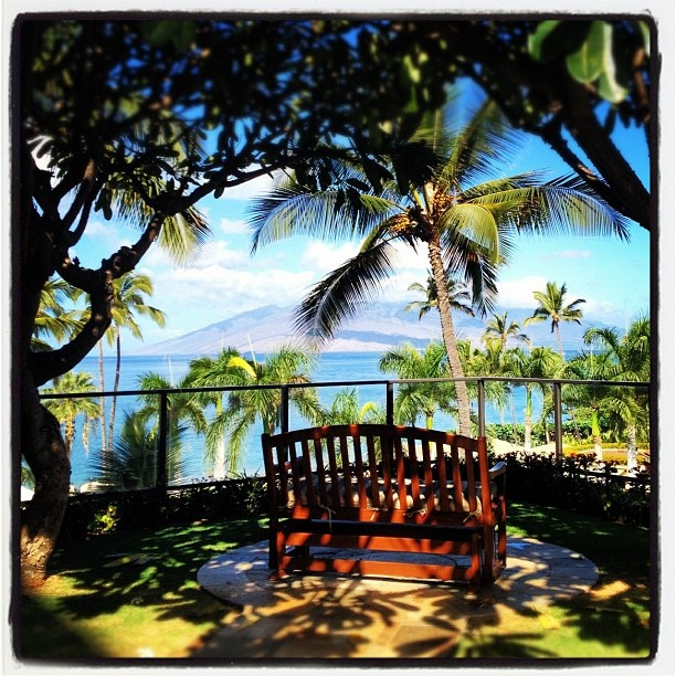 Peaceful Places In Hawaii: 103 Best Images About Flower Garden On Pinterest
