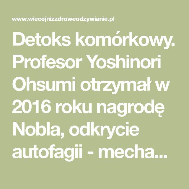 Detoks komórkowy. Profesor Yoshinori Ohsumi otrzymał w 2016 roku nagrodę Nobla, odkrycie autofagii - mechanizmu odnowy organizmu na poziomie komórkowym.