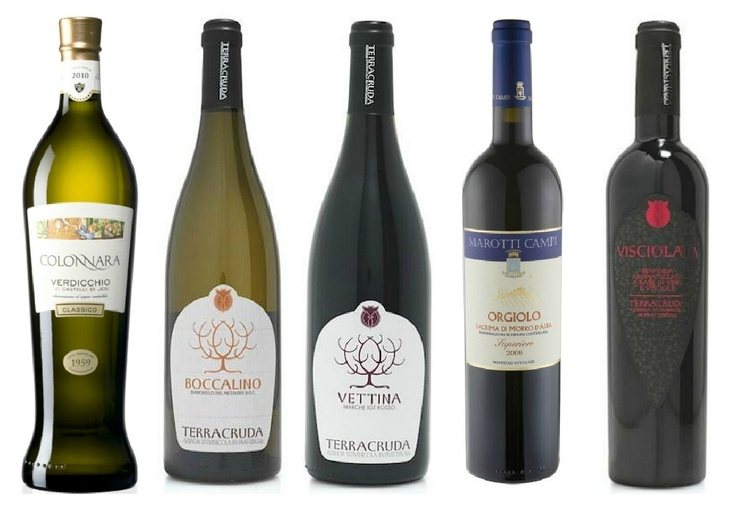 5 Wines from Le Marche, The east coast of Italy