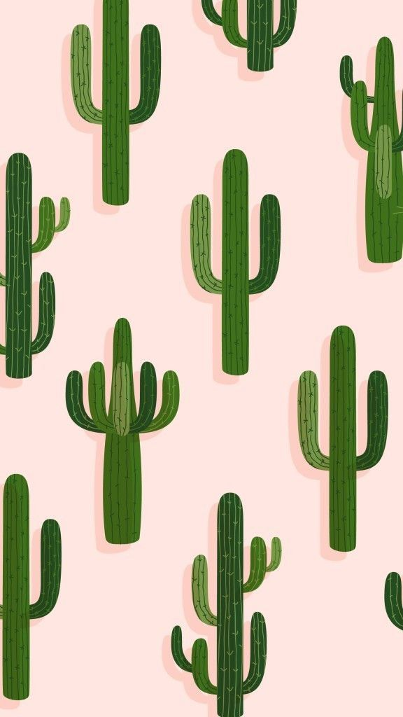 I Frickin Love Cacti Iphone Wallpaper Green Pretty Wallpapers Summer Wallpaper