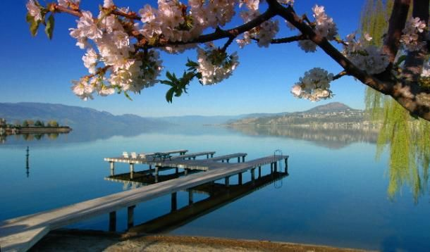 Kelowna BC is one of the best places to visit if you love outdoor activities and if you love wine.