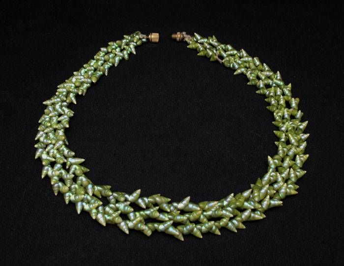 Exhibition Shell Necklace : Best images about tasmanian aborigines on pinterest