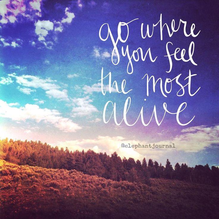 Go where you feel most alive.  Wander. Roam.  Live.