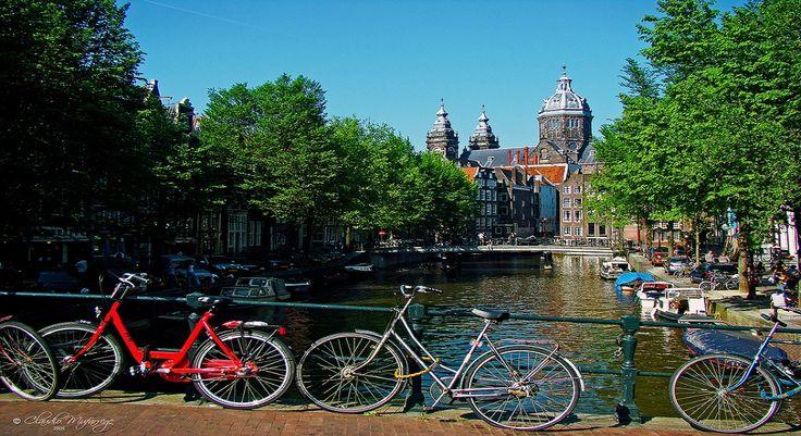 Bisiklet tutkunları için Hollanda'da pedal çevirme vakti.