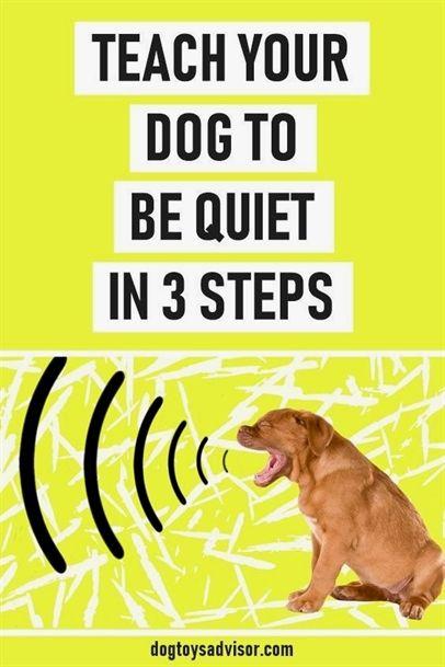 Ultimate Canine Dog Training Julie Case Alpha Dog Training