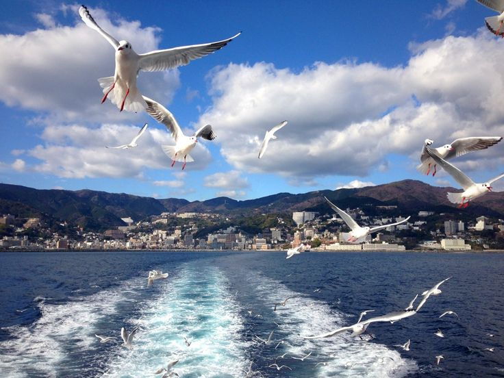 how to get from shizuoka to tokyo