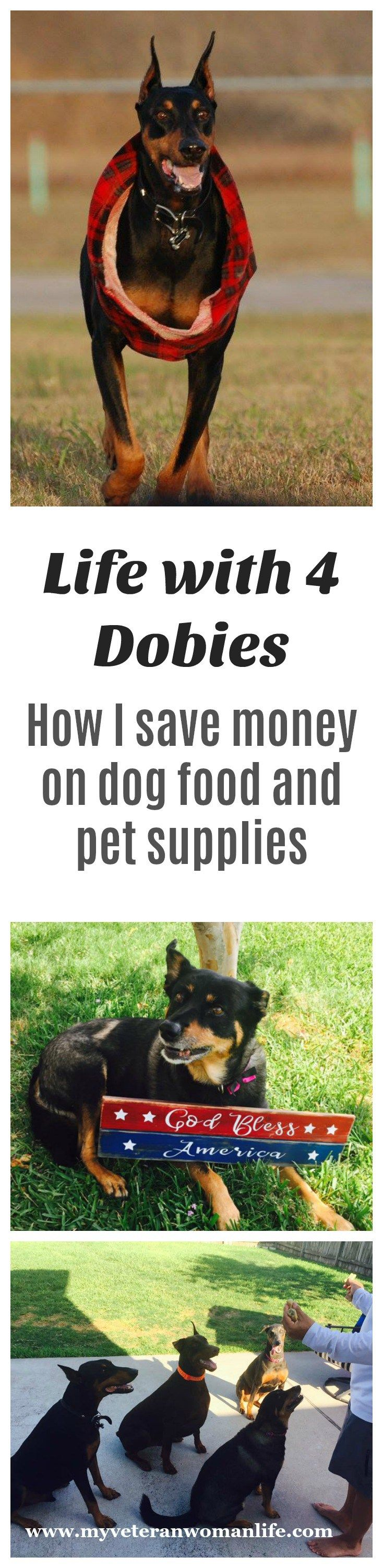 Dog food and pet supplies can be a huge expense when you have four really big dogs to feed! I'm always on the lookout for savings on dog food and supplies.