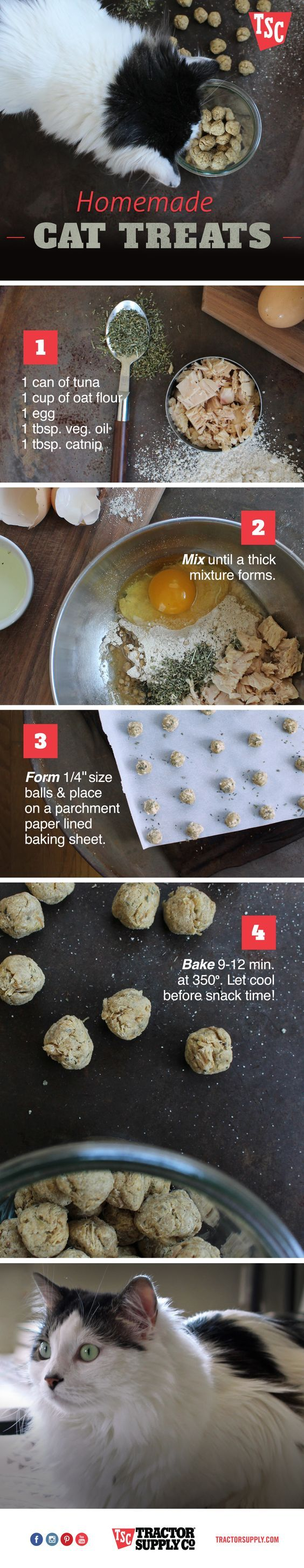 These easy-to-make, homemade cat treats with tuna and catnip will have Kitty jumping for joy.