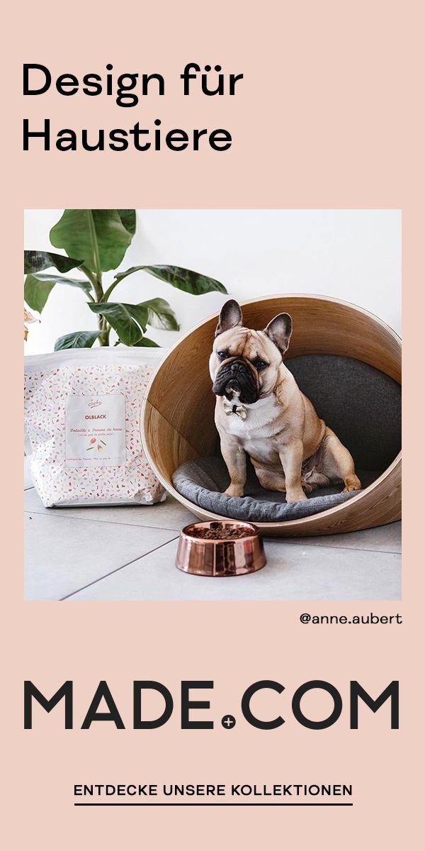 Design Fur Haustiere Haustiere Hund Und Katze Tiere