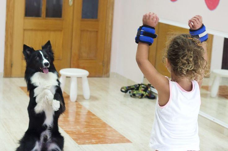¿Qué es la terapia asistida con animales?