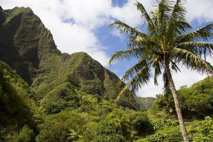 Next up: taking Maui to Maui? Girl's trip to Hawaii? PLEASE?!?!Travel Connection, State Parks, Favorite Things, States Parks, Iao Valley, Call Travel, Girls Trips, Valley States, Www Perutravelconnections Com