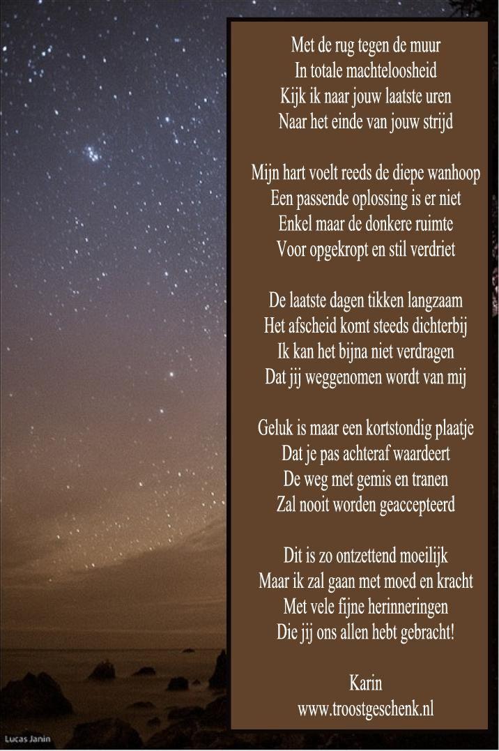 www.troostgeschenk.nl  Wanneer het einde nadert.. gedachten komen af en aan... Hoe zul je na het afscheid met het leven verder gaan...
