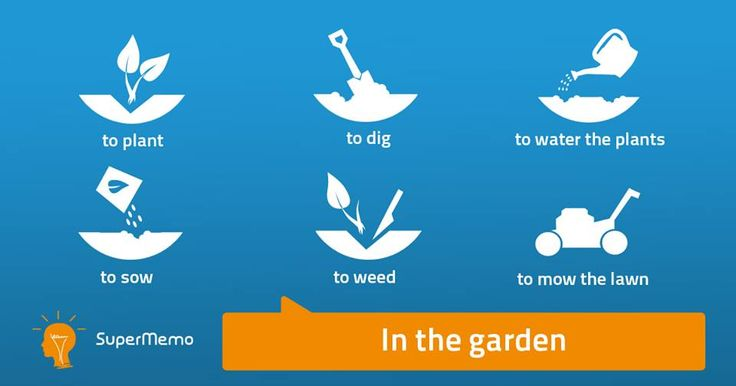 In the garden - English vocabulary: to mow the lawn/grass, to dig, to water the plants, to plant, to sow, to rake, to weed