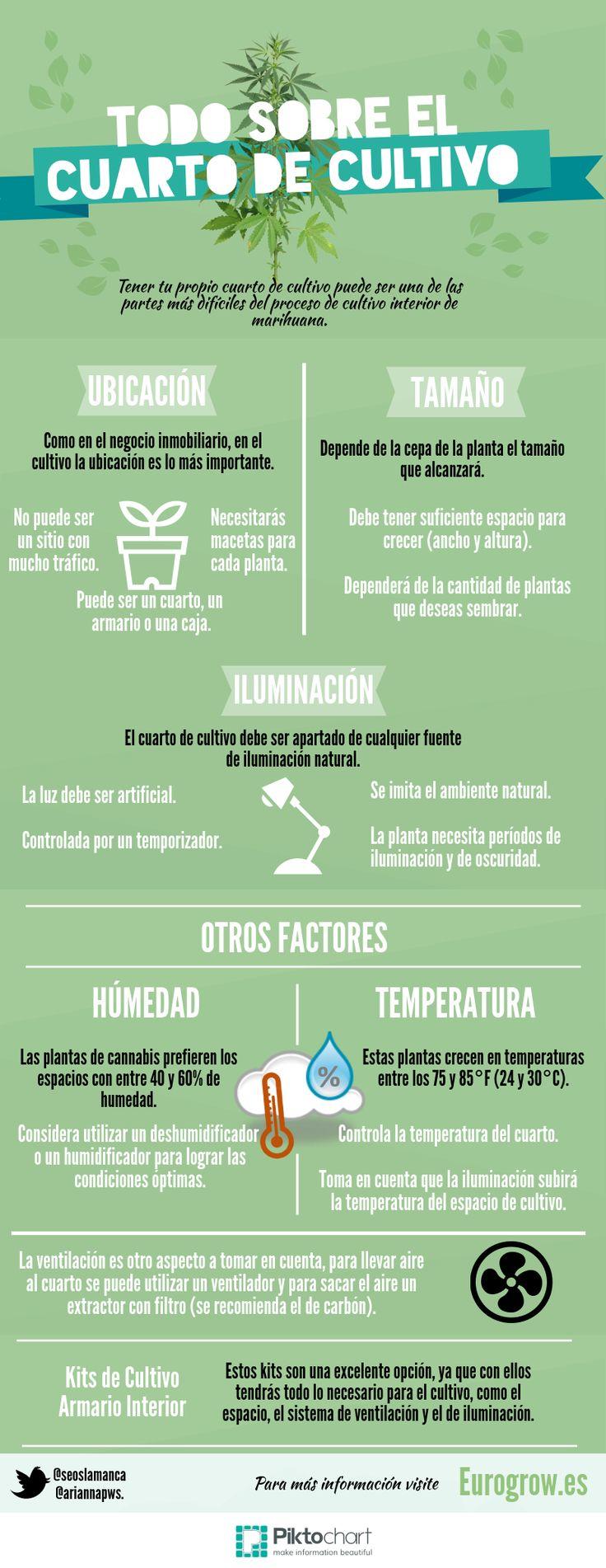 Conoce más sobre el cuarto de cultivo #infografía #cannabis