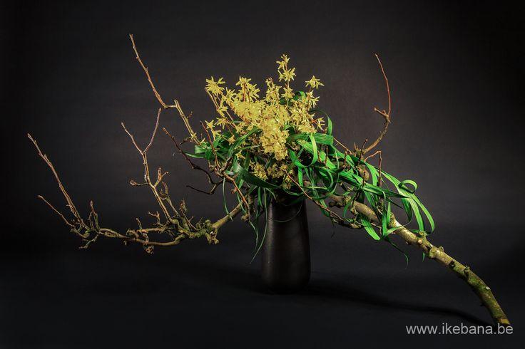 Large ikebana arrangement by Ilse Beunen - Sogetsu