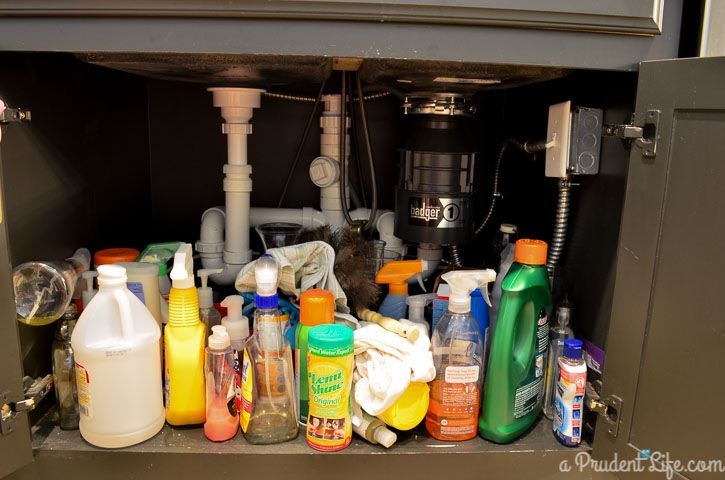 5 Keys to Great Under Sink Organization (BEFORE PHOTO)