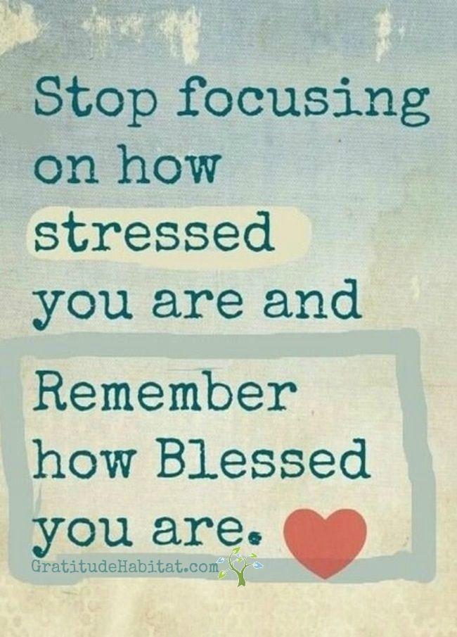 Focus on how Blessed you are.   Visit us at: www.GratitudeHabitat.com #gratitude #blessed #inspirational