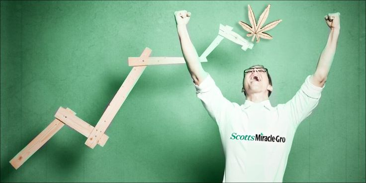 Thanks To Weed, Scotts Miracle-Gro Stock Hit Record Highs - http://houseofcobraa.com/2016/11/16/49560/