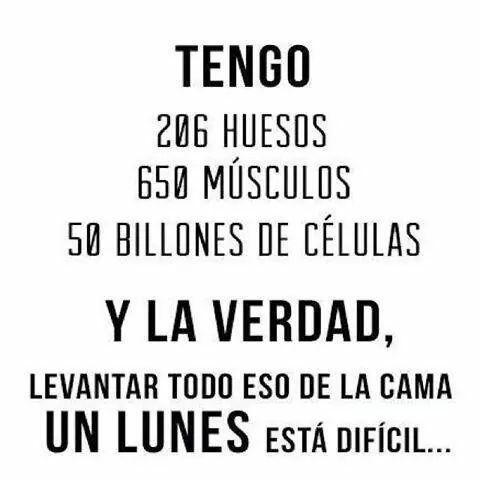 Tengo 265 huesos, 650 musculos, 50 billones de ceulas y la verdad, levantar todo eso de la cama un lunes esta dificil. #citas #frases: