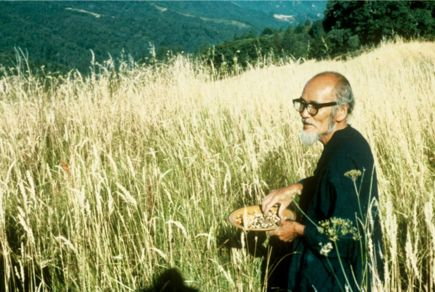 "onestrawrevolution.net--this website is dedicated to the work of Masanobu Fukuoka, the famous Japanese farmer and philosopher who developed the ""Natural Farming"" method also known as ""Do-nothing Farming""."