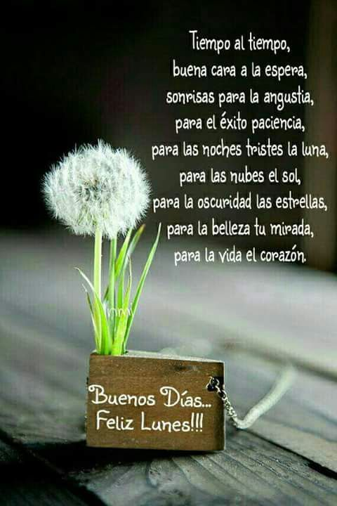 Exito Buen Día Pinterest Good Morning Quotes Morning