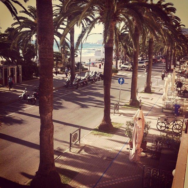 #sun #palms #Italy #pietraligure pic @lucadeguidi