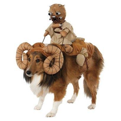 30 best Asta Halloween Costumes images on Pinterest | Pet costumes ...