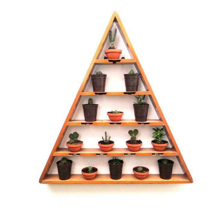 Jardín vertical, Cactus, Suculentas