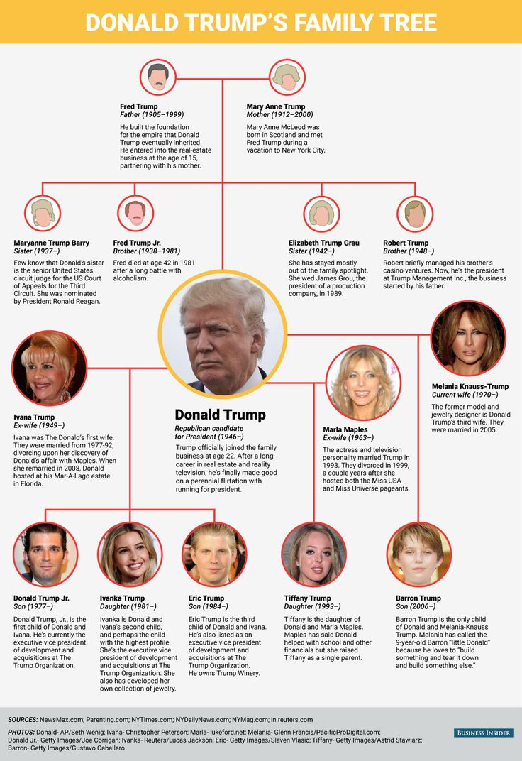 MEET THE TRUMPS: A guide to the GOP front-runner's powerful, far-reaching family.