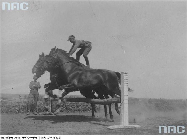 Zawody konne w 21 Pułku Ułanów Nadwiślańskich w Równem. Skok przez przeszkodę - ułan stoi na dwu skaczących koniach.