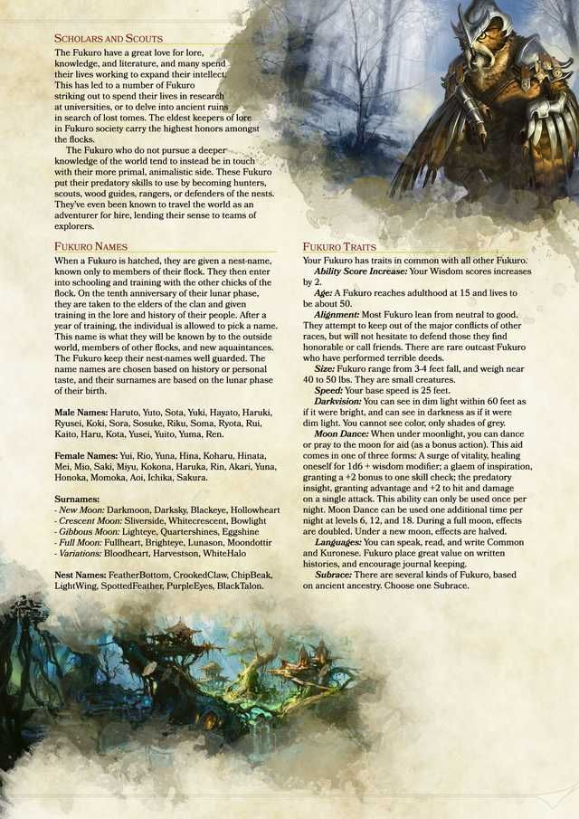 DnD (D&D) homebrew races and classes I've collected  in 2019 | Dnd
