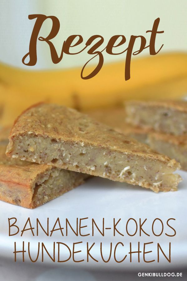 Recipe: Banana coconut cake for dogs