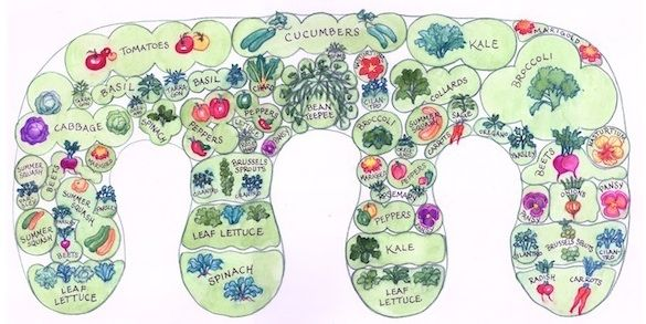 This illustrates the concept of keyhole garden beds