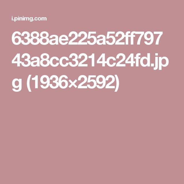6388ae225a52ff79743a8cc3214c24fd.jpg (1936×2592)