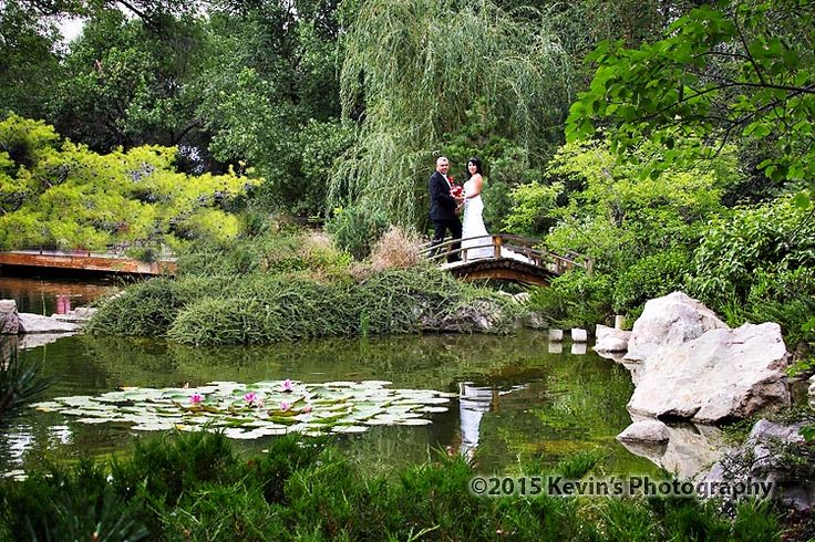 26 best Albuquerque Botanical Gardens Wedding Venue images on ...