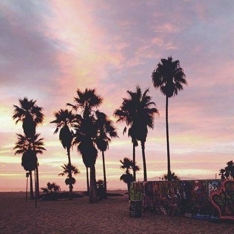 Майами, Флорида������ Пляжный тур 03.06, 7н, Four Points by Sheraton Miami Beach 3*, RO 2033 $ 29.05, 7н, Best Western Plus Windsor Inn 3*, RO 1884 $ 29.05, 7н, The Mimosa & Spa 3*, BB — Только завтрак, 1918 $  Подробнее здесь: http://qui-quo.ru/DB78-CC50 Этот и другие туры в Америку �� +7-495-648-61-86 ��info@snowyfox.ru #снежнаялиса #путешествия #miami #турывамерику #америка #майами #travel #traveling #travelgram #travelling #travelingram #traveler #vacation #vacations #instatravel…