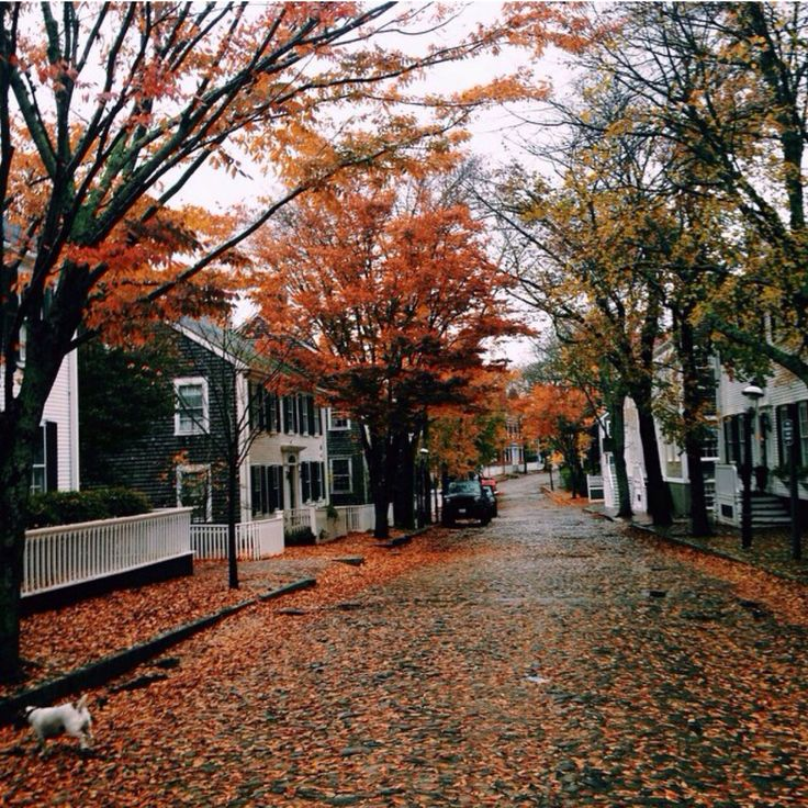 Fall in Nantucket