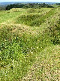 Ruapekapeka - Surviving earthworks at Ruapekapeka