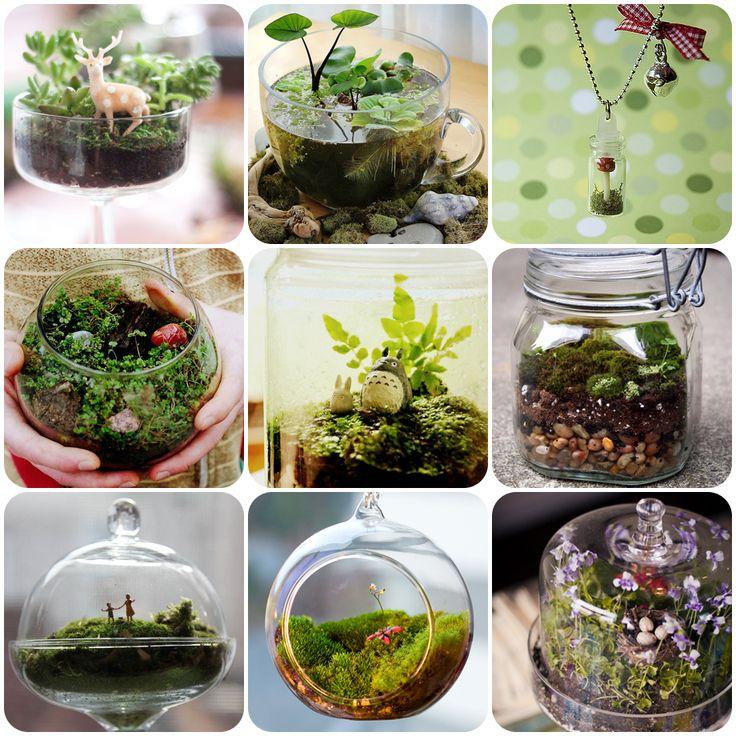 Terrarium inspiration from I'm Catching Fireflies