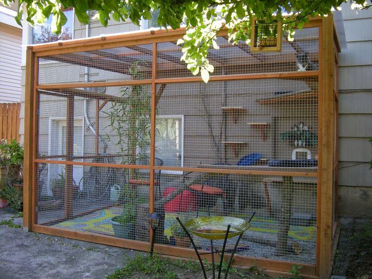 Aquela Zona!: Como fazer um gatil no quintal