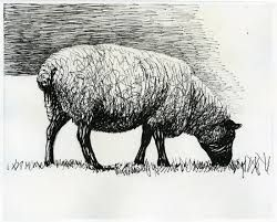 henry moore sheep More