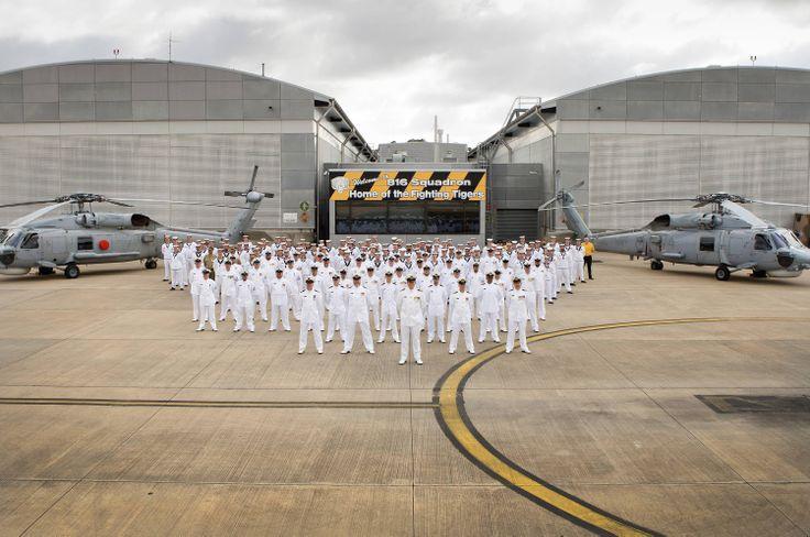 816 Squadron, HMAS Albatross, Nowra NSW - November 2013