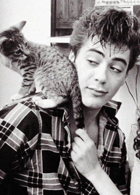 Robert Downey Jr.. if a man loves cats or animals in general. I find that man irresistible!