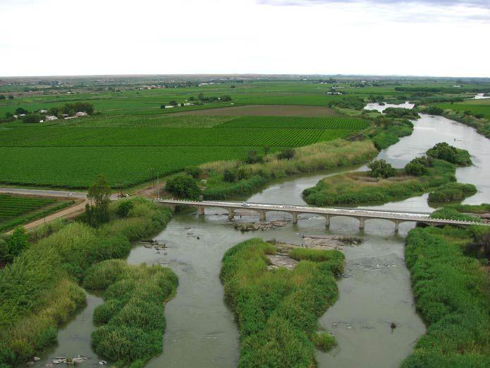 Vineyards along the Orange River, Uppington