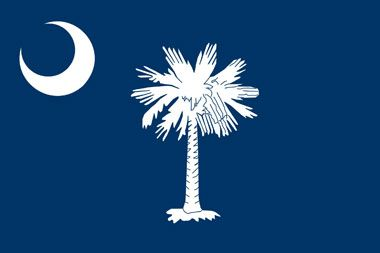 The state flag of south Carolina features the palmetto tree and a crescent moon on a blue background.